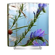 Snail On Flowers Shower Curtain