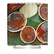 Snail Stones Shower Curtain