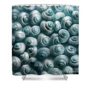Snails Cyan Shower Curtain by Priska Wettstein