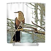 Snake Bird Shower Curtain