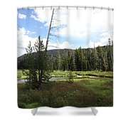 Snake River Meadow Shower Curtain