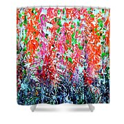 Snapdragons Poster Shower Curtain