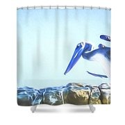 Sneaky Pelican Art Shower Curtain