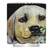 Sniff The Flowers Shower Curtain by Roger Wedegis
