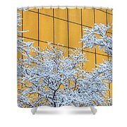 Snow And Golden Glass Shower Curtain