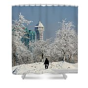 Snow And Ice Shower Curtain