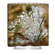 Snow And Ice Macro Shower Curtain