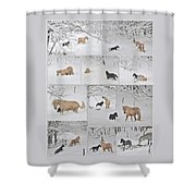Snow Angels Paso Fino Style Shower Curtain