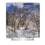 Snow Arches Shower Curtain
