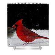 Snow Birds Shower Curtain