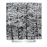 Snow Branches Shower Curtain
