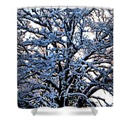 Snow Bright Shower Curtain