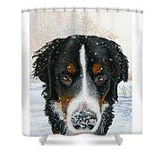 Snow Bumper Shower Curtain