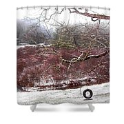 Snow Cabin And Tire Swing Shower Curtain