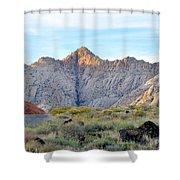 Snow Canyon Shower Curtain