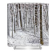 Snow Covered Forest 4 Shower Curtain