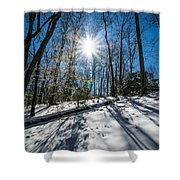 Snow Covered Forest Shower Curtain