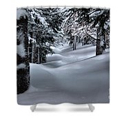 Snow Covered Trail Shower Curtain