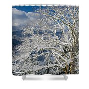 Snow Covered Tree And Winter Scene Shower Curtain