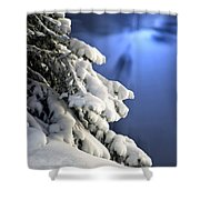 Snow Covered Tree Branches Shower Curtain