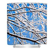 Snow Covered Tree Limb Shower Curtain