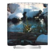 Snow Covered Waterscape Shower Curtain