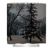 Snow Day Hued Shower Curtain