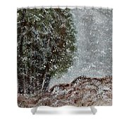 Snow Day II Shower Curtain