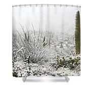Snow Day In The Desert  Shower Curtain by Saija  Lehtonen