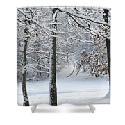 Snow Day Iv Shower Curtain