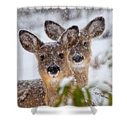 Snow Does Shower Curtain
