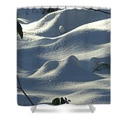 Snow Dunes Shower Curtain