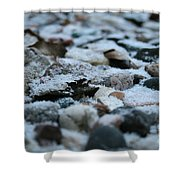 Snow Dusted Shower Curtain