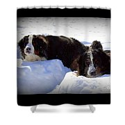 Snow Eaters Shower Curtain