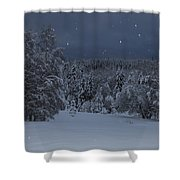 Snow Falling In A Forest Shower Curtain