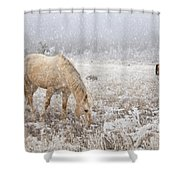 Snow Falling On Horses Shower Curtain