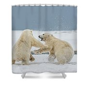 Snow Fight Shower Curtain