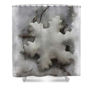 Snow Flake 01 Photo Art Shower Curtain