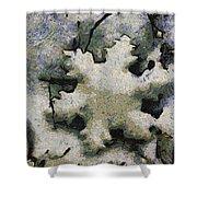 Snow Flake 04 Photo Art Shower Curtain