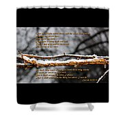Snow From Heaven Shower Curtain