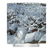 Snow Frosted Bush Shower Curtain
