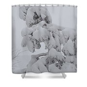 Snow Goon Shower Curtain