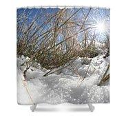Snow Grass Shower Curtain