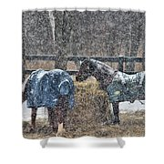 Snow Horses Shower Curtain