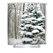 Snow In Ohio Shower Curtain