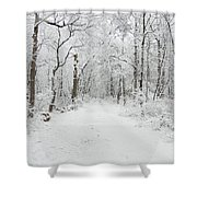 Snow In The Park Shower Curtain by Raymond Salani III