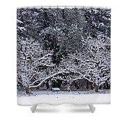 Snow In The Valley Shower Curtain