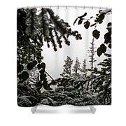 Snow In Trees At Narada Falls II Shower Curtain