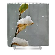 Snow Kissed Shower Curtain