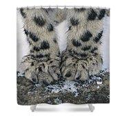 Snow Leopard Feet Shower Curtain